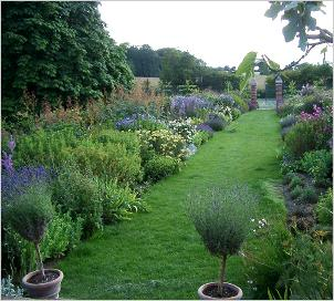 plantscpape-exterior-estate-services-landscape-stewardship-grass-path-with-summer-herbaceous-borders