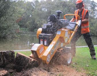 stump-grinding-norwich-norfolk